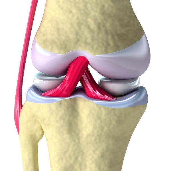 Артроз коленного сустава лечение упражнения